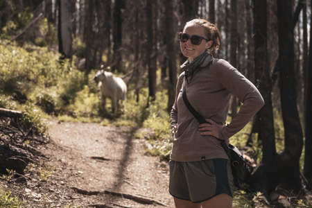 Woman Hiker Looks at Camera With Mountain Goat along trail in Glacier National Park Standard-Bild