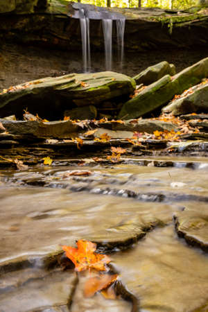 Orange Leaf In the Stream Below Blue Hen Falls in cuyahoga valley National Park