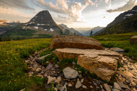 Stream Breaks Around Boulders on Logan Pass in Montana Standard-Bild