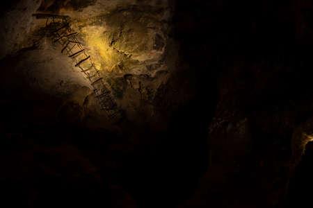 Rustic Ladder hangs Down Cave Wall in Carlsbad Caverns