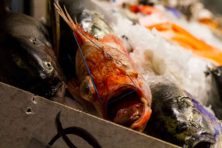 pike place: Fish for sale at a fish market Stock Photo