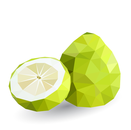 geometric style: Vector illustration of a pomelo rendered in a geometric style