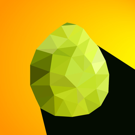 tessellated: Vector illustration of a pomelo rendered in a geometric style