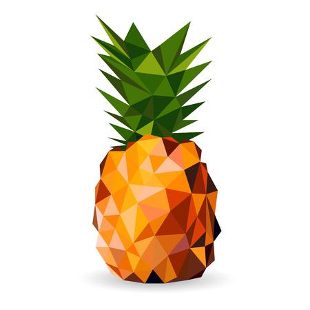 Vector illustratie van een ananas gesmolten in een geometrische stijl