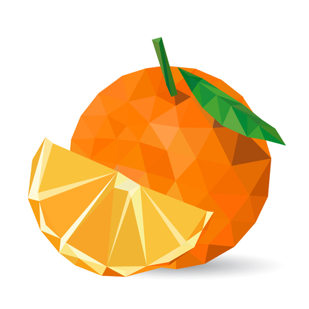 geometric style: Vector illustration of a citrus rendered in a geometric style Illustration