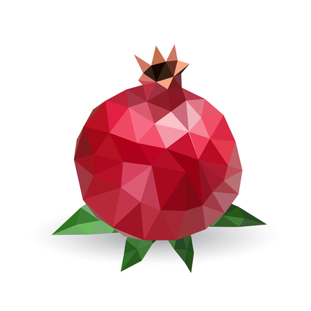 pomegranate: Vector illustration of a pomegranate rendered in a geometric style Illustration