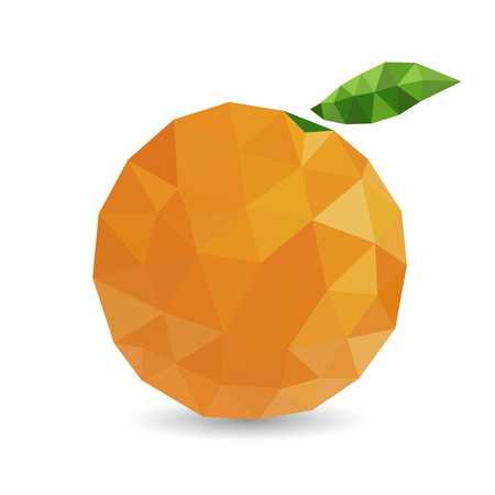 tessellated: Vector illustration of a citrus rendered in a geometric style Illustration
