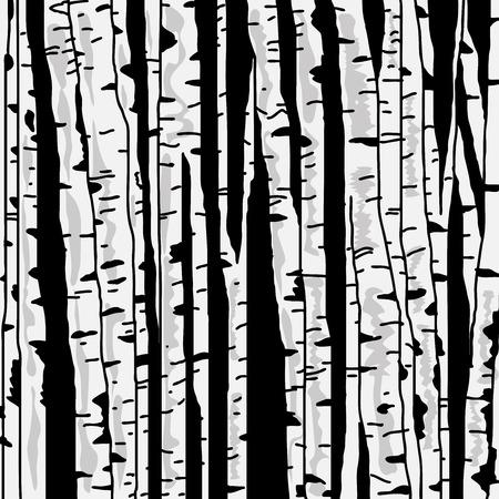 arbres silhouette: Birch arbres fond pour votre conception
