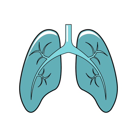Lungs Of The Person Royalty Free Cliparts, Vectors, And Stock ...