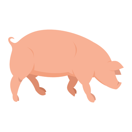 Pink pig in flat style isolated on white background. Pig icon for web and banners. Vector illlustration
