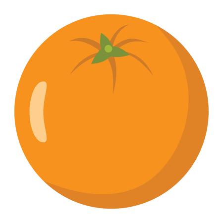 Orange design juicy fresh fruit icon template. Raw orange. Eco bio health food Ilustrace