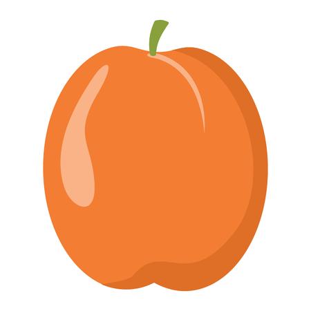 살구 디자인 육즙 신선한 과일 아이콘 벡터 템플릿입니다. 원시 살구. 에코 바이오 건강 식품