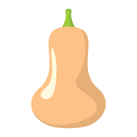 Squash icon in cartoon flat style isolated object vegetable organic eco bio product from the farm vector illustration. Squash object for vegetarian design Stock Photo