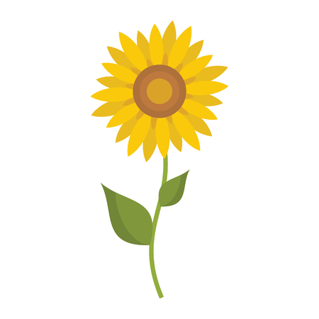 Sunflower icon in flat style vector illustration for design and web isolated on white background. Sunflower vector object for label and advertising