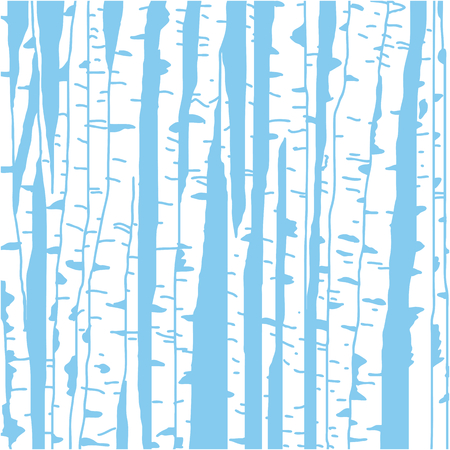 Birch tree background.
