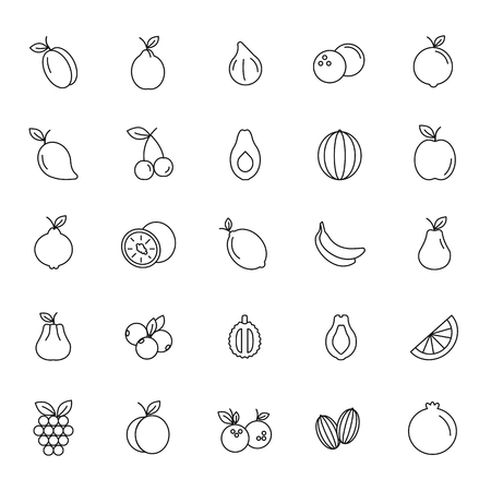 Fruit line icons set. Vector illustration of fruits and berryes in outline stile. Object for advertising and web