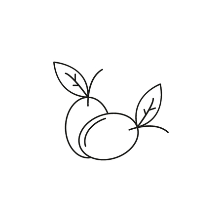 Olives icon. Outline illustration of Olives vector icon for web and advertising