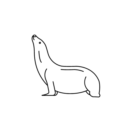 Sea lion icon. Outline sea lion vector icon for web design isolated on white background