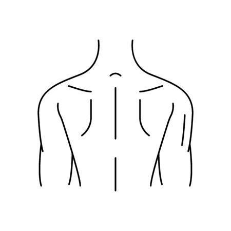 Human back icon. Outline human back vector icon for web design isolated on white background