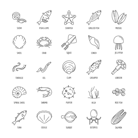 Seafood icon. Outline seafood vector icon with fish and octopus for web design isolated on white background