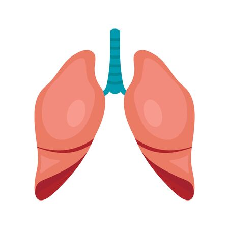 Body part lungs flat icon. Vector Body part lungs in flat style isolated on white background. Element for web, game and advertising 向量圖像