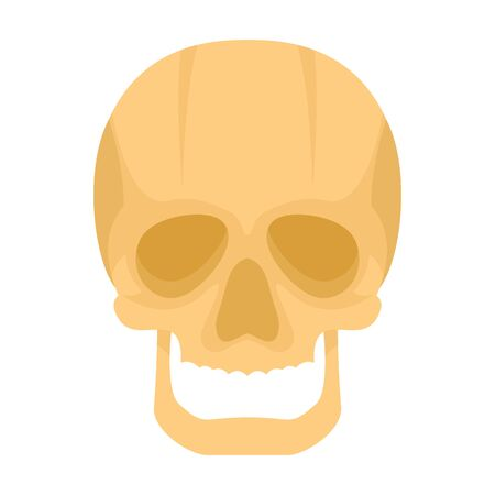 Skull flat icon. Vector Skull in flat style isolated on white background. Element for web, game and advertising 向量圖像