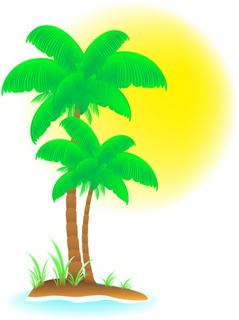 isolated tropical background with palm, beach and sun