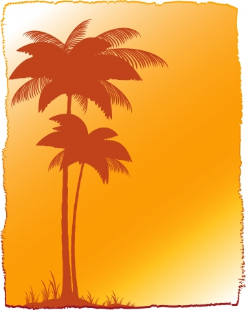 background with tropical landscape - palm and sunset Stock Vector - 13913441