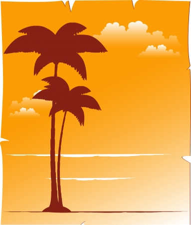 beautiful tropical background with palm and sunset sky with place for text Vector