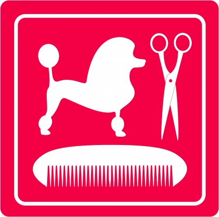 canines: pink grooming icon with poodle dog, scissors and comb silhouette