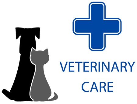 cat call: veterinary care symbol with isolated pet and medical cross