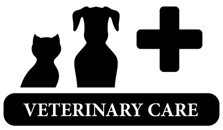 cat call: nero cure veterinarie isolato icona con animali da compagnia silhouette