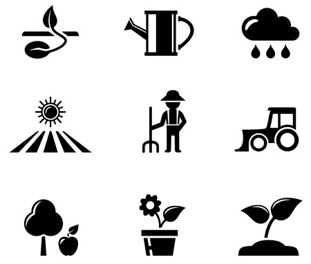 fruit stalk: set of black isolated agriculture concept icons Illustration