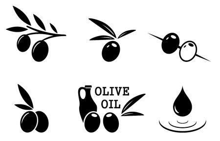 olivo arbol: conjunto de iconos aislados de aceitunas negras sobre fondo blanco