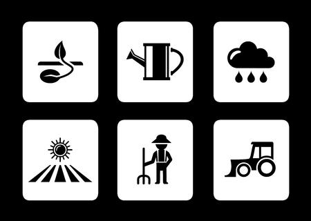 corn stalk: set agriculture six icons on black background Illustration