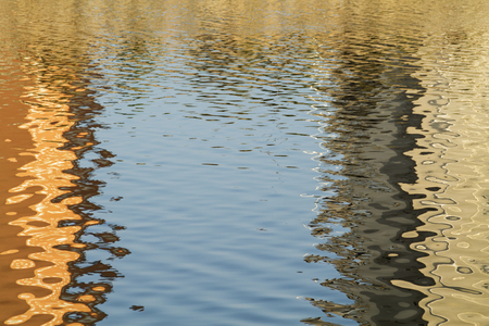 sinuous: nature frame in de river of golden sinuous weaves background