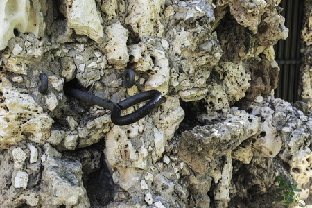 orifice: old  rockwall eroded with a nail fixed in it Stock Photo