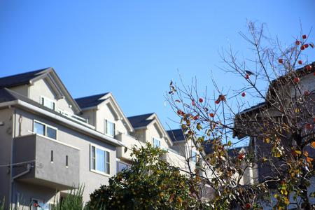 single dwellings: Residential area of Japan