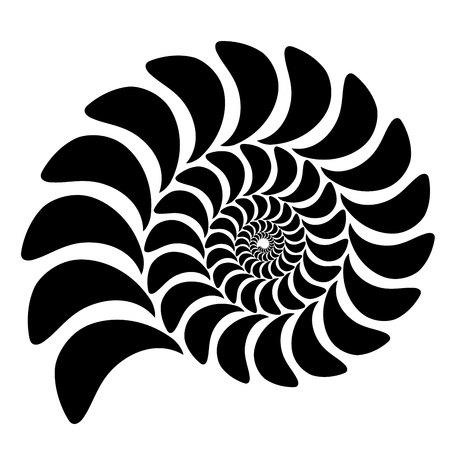 고 대 malyuska의 껍질의 그래픽 벡터 이미지. 추상적 인 배경, 패턴입니다. 흰색 배경에 고립 된 개체