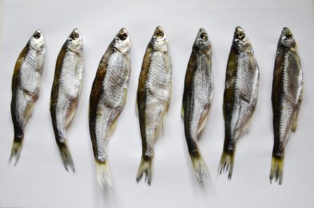 Vis schokkerig, op witte achtergrond. Taranka gedroogd. De groep wordt verticaal op een rij geïsoleerd. zeevruchten