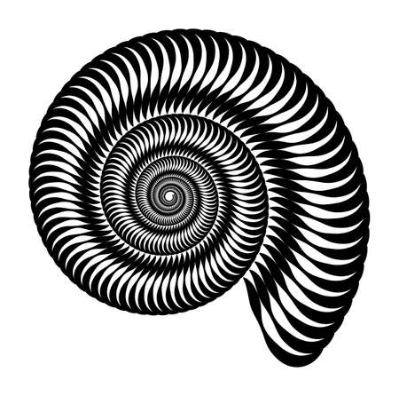 Vector pattern in the form of a snail. Marine ornament, pattern. Isolated geometric pattern. Black and white, monochrome