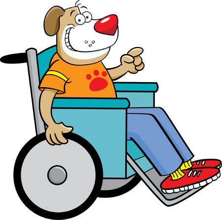 dog wheelchair: Cartoon illustration of a dog in a wheelchair