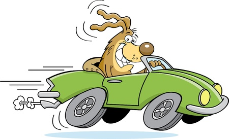 Cartoon illustration of a dog driving a car