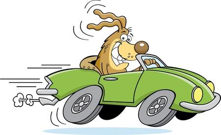 drive: Cartoon illustration of a dog driving a car