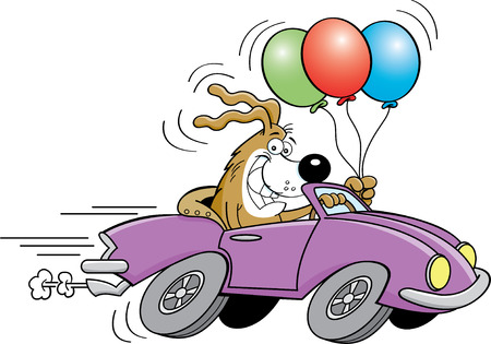 driving a car: Cartoon illustration of a dog driving a sports car and holding balloons.
