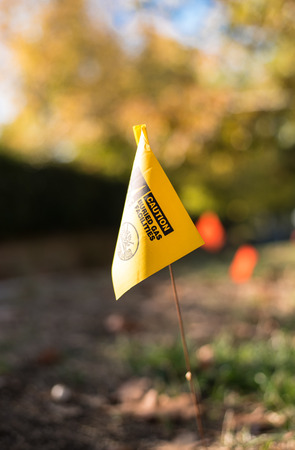 Surveyor Ground Flag Imagens