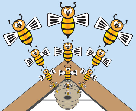 predicament: Bees pouring out of a hive attached to the eve of a house