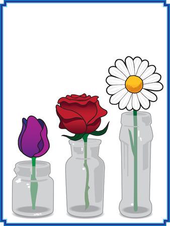 Single flowers in glass vases