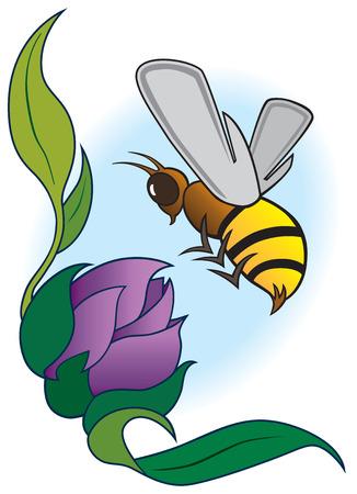 Bee preparing to land on purple flower