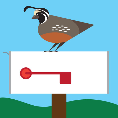 Stylized quail resting on rural mailbox